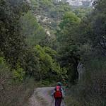 Vallon de la Tapi au pied du Portalas